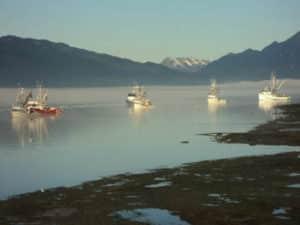 Lynnwood diesel marine services